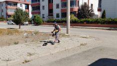 Mahallelerde genel temizlik çalışmaları devam ediyor