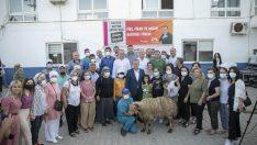 Seçer, Anamur'da koyun, keçi ve avokado fidanı dağıtım törenine katıldı