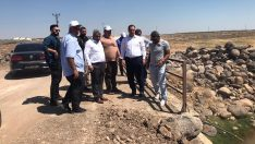 Viranşehir kırsalında asfalt çalışması