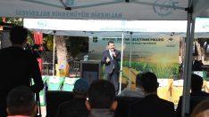 Balıkesir Büyükşehir'den süt otu desteğinde rekor