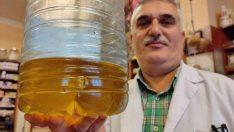 Bu yağların litre fiyatı 2 bin liradan başlıyor, gram gram satılıyor