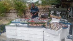 Emet'te yeni balık satış noktası açıldı