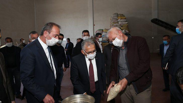 Erciyes'in eteklerinde kabak çekirdeği hasadı