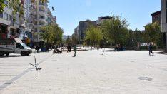 Siirt'te ağaçlandırma çalışmaları başladı